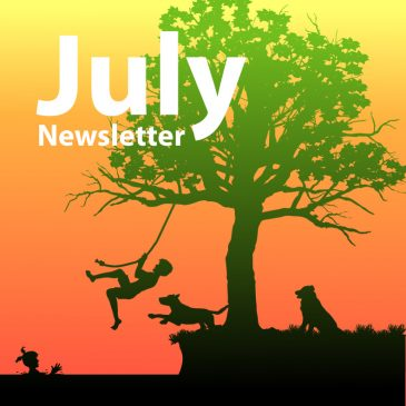Newsletter July 2019